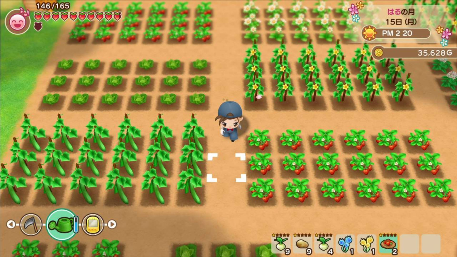 the-harvest-moon-best-gba